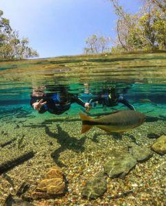 Qual a idade  mínima para fazer a flutuação no Rio da Prata?