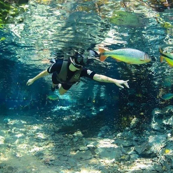 Aquario Natural por Sasha Luthiele